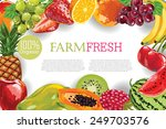 fruits frame   Shutterstock .eps vector #249703576