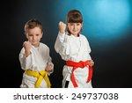 karate martial arts | Shutterstock . vector #249737038