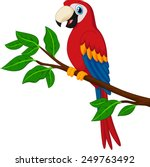 cartoon red parrot on a branch  | Shutterstock .eps vector #249763492