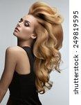 hair volume.  portrait of... | Shutterstock . vector #249819595