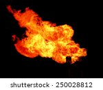 fire | Shutterstock . vector #250028812
