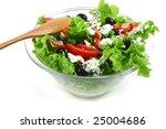 vegetable salad and roquefort...   Shutterstock . vector #25004686