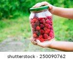 raspberries | Shutterstock . vector #250090762