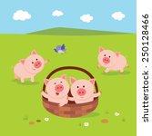 Farm. Farm. Little Piglets....