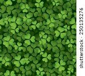 clover leaves background  ... | Shutterstock .eps vector #250135276