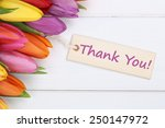 the words thank you with tulips ... | Shutterstock . vector #250147972