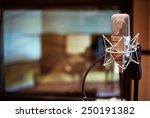 Professional Condenser Studio...