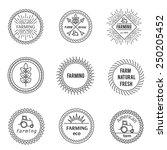 set of outline emblems farm... | Shutterstock .eps vector #250205452