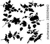 set silhouette black design...   Shutterstock .eps vector #250339642