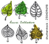 leaves collection | Shutterstock . vector #250409698