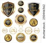 premium  quality retro vintage... | Shutterstock .eps vector #250446562