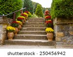 Potted Flowers On A Staircase...