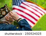 veteran's saluting | Shutterstock . vector #250524325