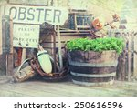 Image Of Lobster Pots  Buoys...