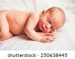 sweet newborn baby sleeping on... | Shutterstock . vector #250638445