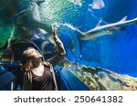 Young Girl In Aquarium Tunnel...