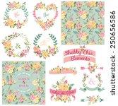 vintage floral set   frames ...   Shutterstock .eps vector #250656586
