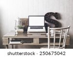 stylish workspace with laptop ... | Shutterstock . vector #250675042
