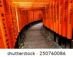 red tori gate at fushimi inari... | Shutterstock . vector #250760086