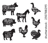 farm animals set chalkboard... | Shutterstock .eps vector #250788295