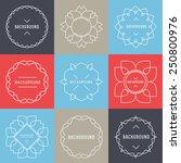 trendy retro vintage insignias... | Shutterstock .eps vector #250800976
