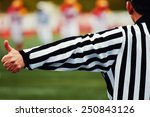 referee of the american... | Shutterstock . vector #250843126