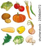 vector illustration of...   Shutterstock .eps vector #250860472