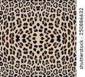 leopard seamless background | Shutterstock .eps vector #250886632