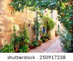 picturesque narrow alley at a... | Shutterstock . vector #250917238
