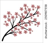 blossoming branch. hand drawing ...   Shutterstock .eps vector #250987558