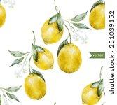 lemon  watercolor  pattern ... | Shutterstock .eps vector #251039152