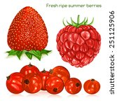 fresh ripe summer berries.... | Shutterstock .eps vector #251125906