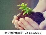 hand and plant | Shutterstock . vector #251312218
