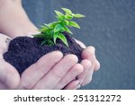 hand and plant | Shutterstock . vector #251312272