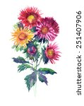 watercolor bouquet of asters ... | Shutterstock . vector #251407906