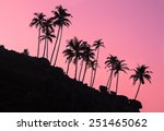 silhouettes of palm trees on... | Shutterstock . vector #251465062