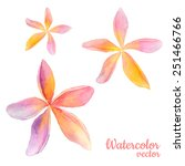 abstract floral watercolor... | Shutterstock .eps vector #251466766