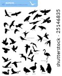 Collection Of 40 Silhouettes O...