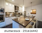 modern  bright  clean  kitchen... | Shutterstock . vector #251616442