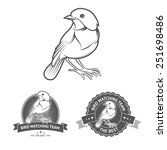 bird watching badges and labels ... | Shutterstock .eps vector #251698486