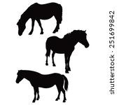 Vector File Of Horse Silhouette