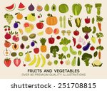 mega collection of premium... | Shutterstock .eps vector #251708815