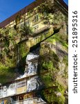 Small photo of Double exposure-highest residential building-a rock covered with plants grown rapidly effluent water