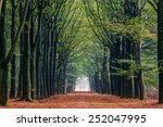 Autumn landscape with trees and ...
