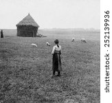 Small photo of Farming district on the old battleground of Agincourt, France, 1900s.
