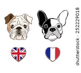 english bulldog face and french ...   Shutterstock .eps vector #252229018