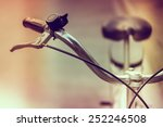 soft focus on vintage bicycle   ... | Shutterstock . vector #252246508