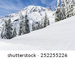 Mount Rainier As Seen From The...
