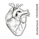 heart a | Shutterstock .eps vector #252420658