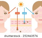 infographic skin illustration.... | Shutterstock .eps vector #252463576